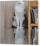 Cat Standing On Chair Wood Print