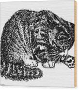 Cat-tabby-posters-1 Wood Print