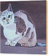 Cat With Brown Background Wood Print