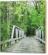 Catalpa Plantation Bridge Wood Print