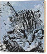 Catawampus Wood Print