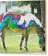 Catch A Painted Pony Wood Print
