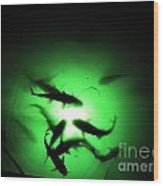 Catfish At Night Wood Print