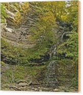 Cathedral Falls West Virginia Wood Print