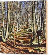 Catoctin Trail Wood Print