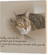 Cats Protecting You From Gnomes - Lily The Cat Wood Print