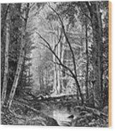 Catskill Brook, 1873 Wood Print
