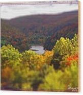 Catskill Fall Wood Print