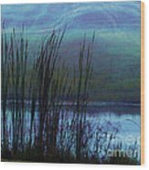 Cattails In Mist Wood Print