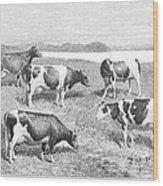 Cattle, 1888 Wood Print
