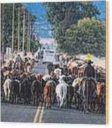 Cattle Drive 3 Wood Print