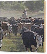 Cattle Drive Wood Print