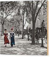 Catwalk In New York 1901 Wood Print