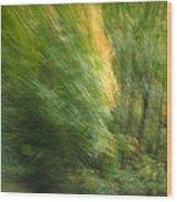 Caught Away Wood Print