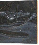 Caution Icy Curves Ahead Wood Print
