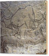 Cave Art - Mammoth And Ibexes Wood Print