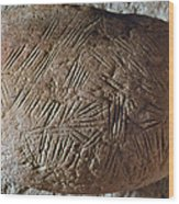 Cave Art: Incised Rock Wood Print