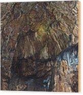 Cave01 Wood Print by Svetlana Sewell
