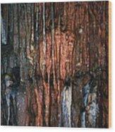 Cave05 Wood Print