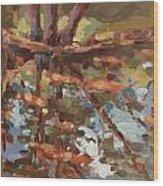 Cedar Creek Reflection Wood Print
