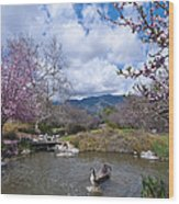 Celebrating Spring Wood Print