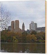 Cental Park City View Wood Print