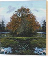 Center Island Wood Print