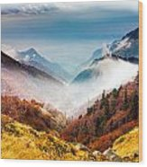 Central Balkan National Park Wood Print
