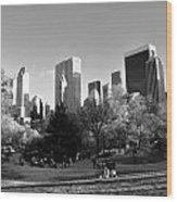 Central Park 2 Wood Print