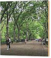 Central Park Arbor Walk Spring Wood Print