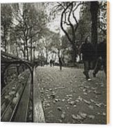 Central Park Bench Wood Print