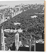 Central Park Bw3 Wood Print