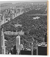 Central Park Bw6 Wood Print