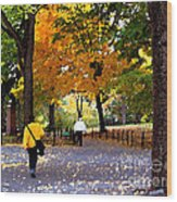Central Park Fall Walk Wood Print