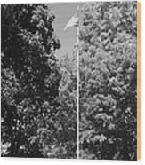 Central Park Flag In Black And White Wood Print