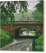 Central Park In The Rain Wood Print
