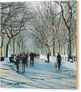 Central Park In Winter Wood Print