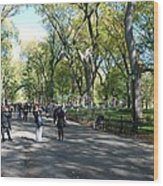 Central Park Mall Wood Print by Rob Hans