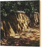 Central Park Wall Wood Print