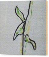 Ceramic Plant Wood Print