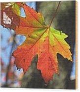 Changing Colors Wood Print