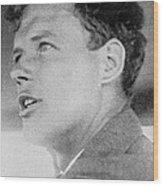 Charles Lindbergh, Us Aviation Pioneer Wood Print