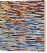 Charles Reflections Wood Print