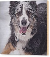 Chasing The Snow Wood Print by Joye Ardyn Durham