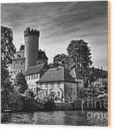 Chateau On The Lake At Annecy Wood Print