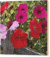 Chawton Petunias Wood Print