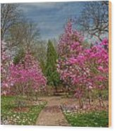 Cheekwood Gardens Wood Print
