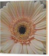 Cheeriest Flower Wood Print