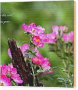Cherokee Rose Card - Flower Wood Print
