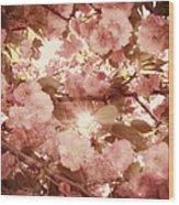 Cherry Blossom Sky Wood Print by Amy Tyler
